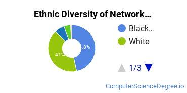 Network Administration Majors in GA Ethnic Diversity Statistics