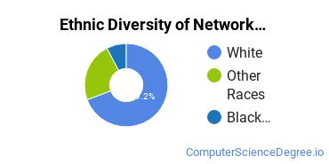Network Administration Majors in ID Ethnic Diversity Statistics