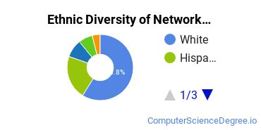 Network Administration Majors in IL Ethnic Diversity Statistics