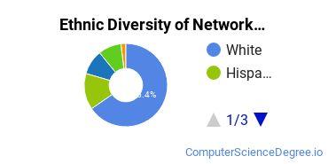Network Administration Majors in IA Ethnic Diversity Statistics