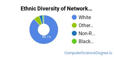 Network Administration Majors in ME Ethnic Diversity Statistics
