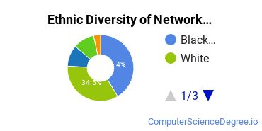 Network Administration Majors in MA Ethnic Diversity Statistics