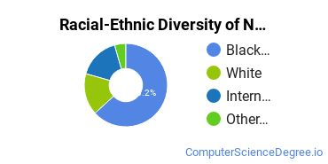 Racial-Ethnic Diversity of Network Administration Master's Degree Students