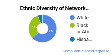 Network Administration Majors in MO Ethnic Diversity Statistics