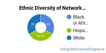 Network Administration Majors in MT Ethnic Diversity Statistics