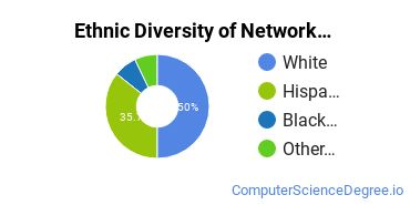 Network Administration Majors in NV Ethnic Diversity Statistics