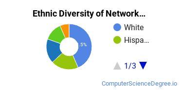 Network Administration Majors in NJ Ethnic Diversity Statistics