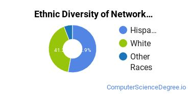 Network Administration Majors in NM Ethnic Diversity Statistics