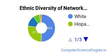 Network Administration Majors in NY Ethnic Diversity Statistics
