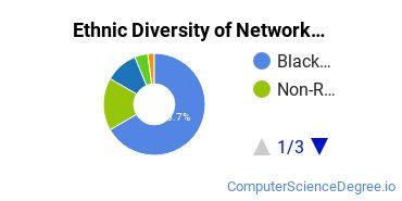 Network Administration Majors in NC Ethnic Diversity Statistics