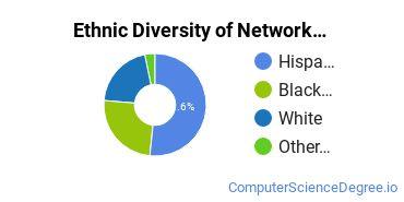 Network Administration Majors in TX Ethnic Diversity Statistics