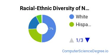 Racial-Ethnic Diversity of Network Administration Undergraduate Certificate Students