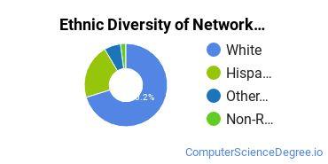 Network Administration Majors in UT Ethnic Diversity Statistics