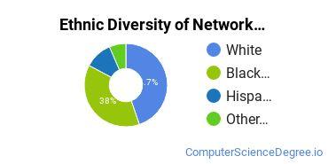 Network Administration Majors in VA Ethnic Diversity Statistics