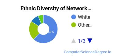 Network Administration Majors in WA Ethnic Diversity Statistics